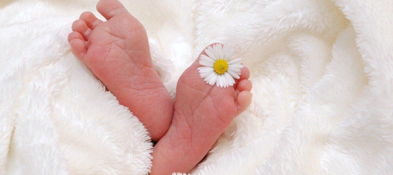 Start Babygruppe